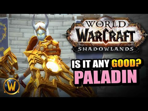 PALADIN in Shadowlands // Is it any good?