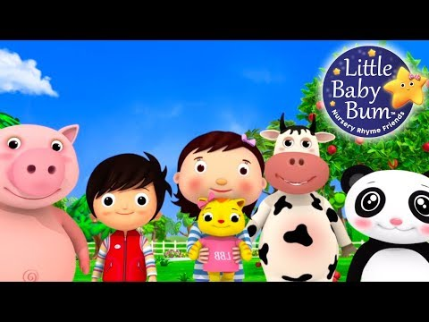 Nursery Rhyme Videos | Compilation from LittleBabyBum! | New Live Stream!