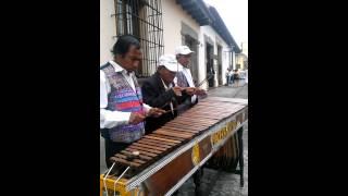 Marimba Maderas Del Sur