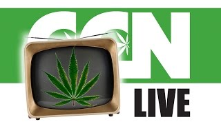 Cannabis Culture News LIVE: How The Media Covers Marijuana in 2016 by Pot TV