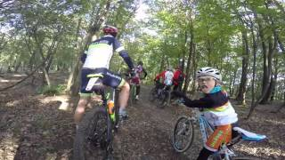 Collecchio Italy  city photos : MTB nei Boschi di Carrega, Collecchio, Parma, Italy 24/10/2015 Gopro Hero