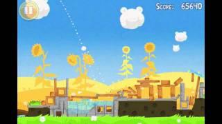 Angry Birds Seasons Summer Pignic Level 2 Walkthrough 3 Star