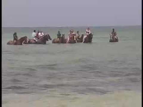Island Adventures #3 Horseback Riding Better Quality