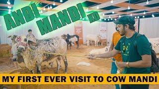 ANDI MANDI - My First Ever Visit To COW MANDI | Mansoor Qureshi MAANi