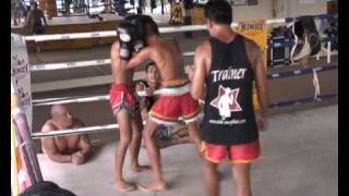 Traditional Muay Thai Training Session At Sinbi Muay Thai Phuket