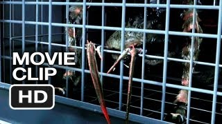 Nonton Spiders 3d Movie Clip  1  2013  Christa Campbell  William Hope Movie Hd Film Subtitle Indonesia Streaming Movie Download
