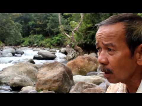 Hutan Nagari Sumatera Barat