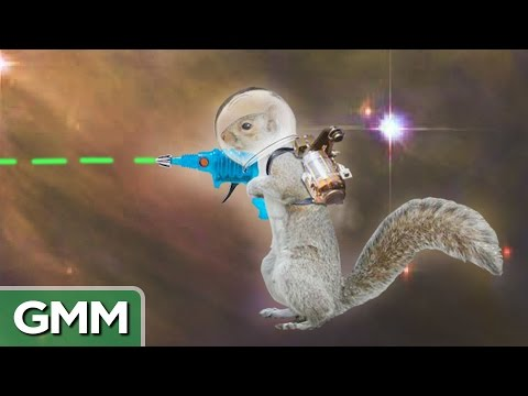 internet - Today we take a trip to the weird part of the internet! GMM #556! Good Mythical MORE: http://youtu.be/ULtOQWfvuaY For a free trial of Lynda.com go to - http://lynda.com/rhettandlink http://procat...