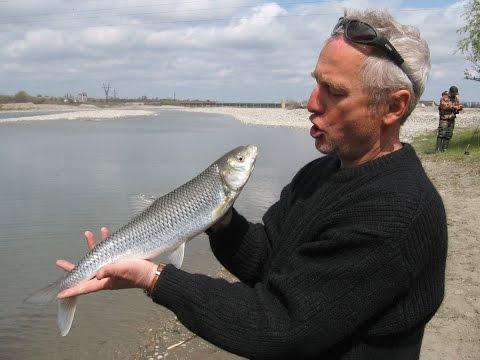 рыбалка в дагестане на кутум видео