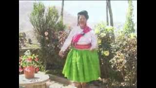 huallatita de lago - musica huayño aymara