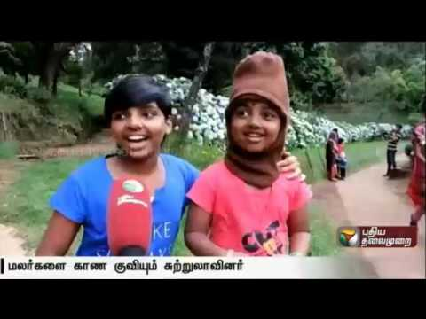 Ooty-Flower-show-2016-in-Udhagamandalam-attract-the-tourists