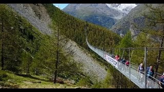 Touted the world's longest pedestrian suspension bridge, the structure opened in the Alps in Switzerland on July 29. It offers breathtaking views but it is not for ...