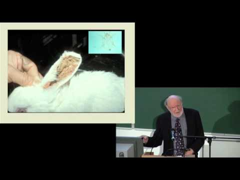 Prof William Campbell - The Story of Ivermectin