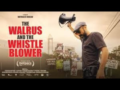 The Walrus And The Whistleblower Trailer 2020