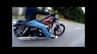 7. Harley Davidson Dyna Wideglide 2010