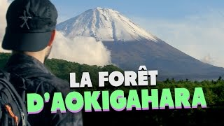 Video LA FORET D'AOKIGAHARA (SUICIDE FOREST) - (LES ETRANGES EXPERIENCES) MP3, 3GP, MP4, WEBM, AVI, FLV Mei 2017
