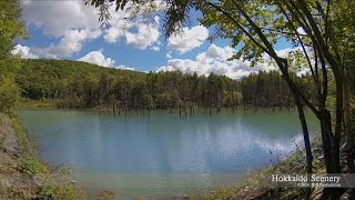 Kamikawa-cho Japan  City pictures : 青い池 上川郡美瑛町 北海道 Blue Pond, Hokkaido JAPAN