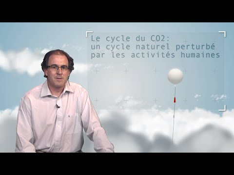 The carbon cycle: a natural cycle disrupted by human activity