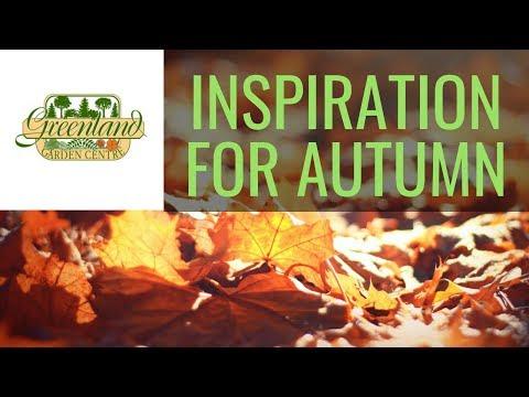 Autumn Inspiration - Greenland Garden Centre 2018