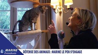 Video Défense des animaux : Marine Le Pen s'engage !   Marine 2017 MP3, 3GP, MP4, WEBM, AVI, FLV Mei 2017