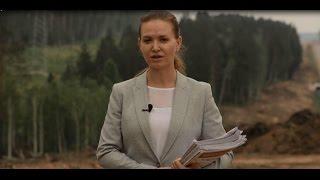 Иркутская область просит Путина о моратории на вырубку леса