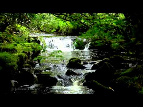 classical - 200 minutes of relaxing classical music. Relax with this soothing video set in nature. listen to the wonderful sound of Johann Sebastian Bach's Brandenburg c...