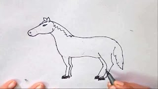 How to draw a Horse-in easy steps for children, kids, beginners, Step by step.