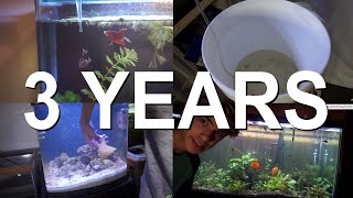 What I've Learned Keeping Fish For 3 YEARS! by  Challenge the Wild