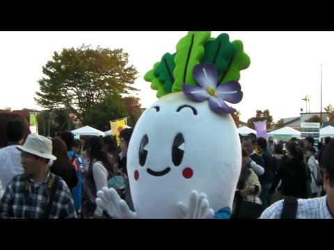 【ゆるキャラまつり2009速報版】ハマちゃん(兵庫県)