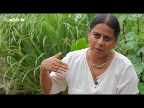 Importance of permaculture for Indian agriculture