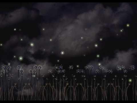 , title : 'L.Ligabue...il campo delle lucciole'