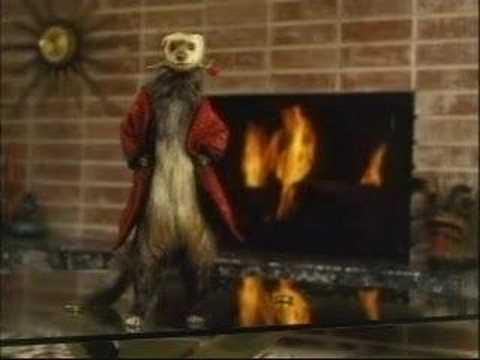 Budweiser Commercial Nude Ferret (America)
