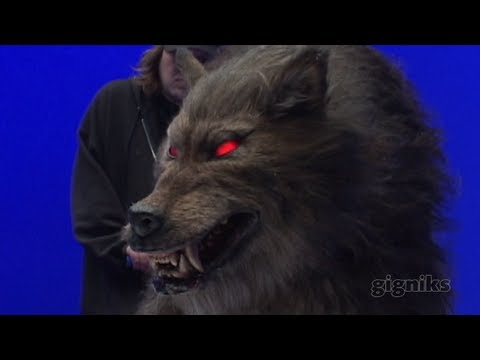 Creature Effects - WHAT YOU DO: Make animals and other creatures come to life on movie and TV screens using make-up, props, and animatronics to mimic realistic movement. EDUCAT...