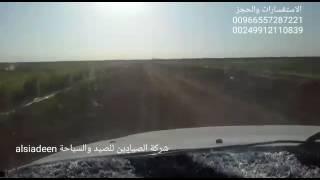 Video استمتع بصيد في السودان اجوال كروان وجرول ماشاء الله MP3, 3GP, MP4, WEBM, AVI, FLV Agustus 2018