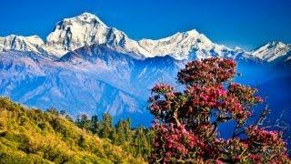Pokhara Nepal  City pictures : POKHARA , the most beautiful place in NEPAL ( ポカラ ネパール)