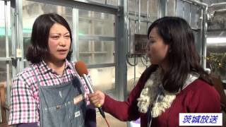 茨城県植物園 - 動画・画像のま...