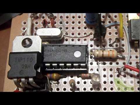 Trampa electrica para matar ratones videos videos - Como atrapar ratones ...
