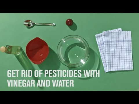 EasyTip video explaining how to clean using water and vinegar