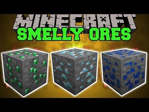 Minecraft: SMELLY ORES (FIND ANY ORES AND THEIR LOCATIONS!) Mod Showcase