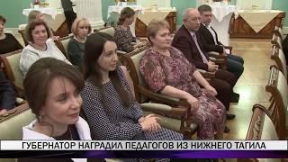 Губернатор наградил педагогов из Нижнего Тагила