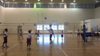 Volleyball Ace Academy | WDPVB