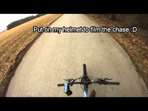 Angry Guy vs. Mountainbiker (GERMAN) | Wheelie-Lifestyle (видео)