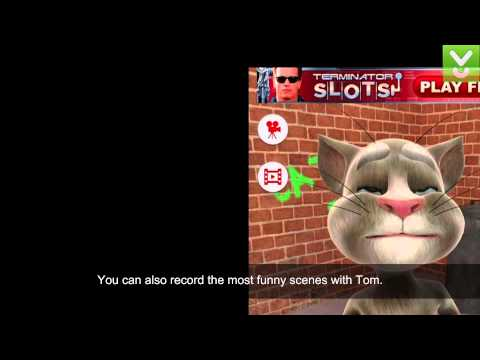 Video Talking Tom Cat - Have fun with your talking pet - Download Video Previews download in MP3, 3GP, MP4, WEBM, AVI, FLV January 2017