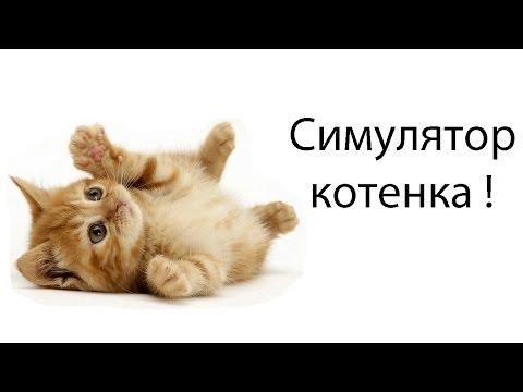 Симулятор котенка !