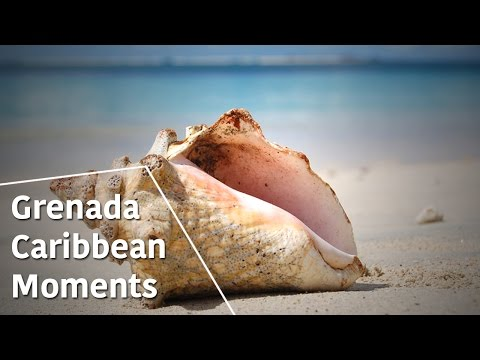 Grenada - Caribbean Moments - The Secrets of Nature