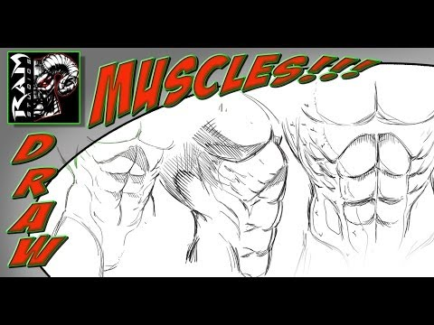 Drawing Stomach Muscles - Anatomy for Comic Illustration