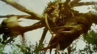映画『キングコング:髑髏島の巨神』15秒スポット予告6