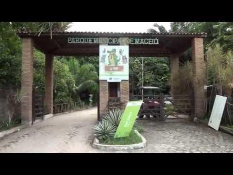 Conheça o Parque Municipal