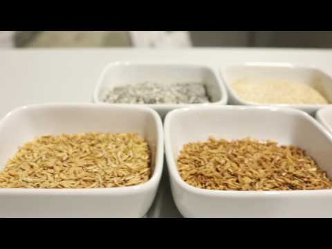 , title : 'Gluten Free Home Brewing Tutorial Series - The Ingredients'