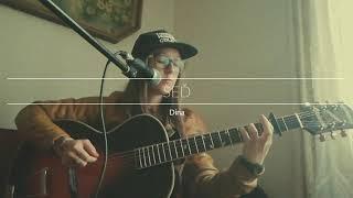 Video Dina-Šeď